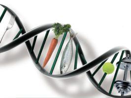 peso forma e genetica