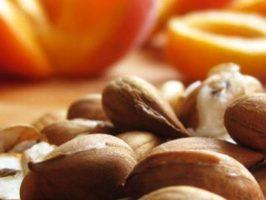 I semi di albicocca vs cancro